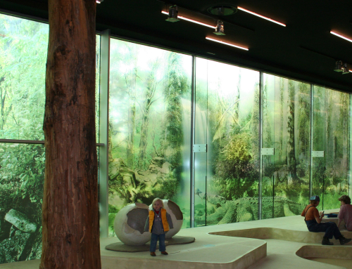 Transparent window film (3) with forest and animals