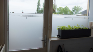 Frosted window film (1) Scullery