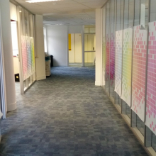 Transparent window film (3) project, office, custom design