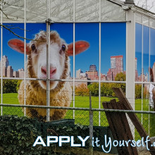 large, wall sticker, multiple windows, outside, outdoor, sheep, cow, window stickers, bespoke design, apply it yourself