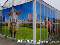 large, wall sticker, multiple windows, outside, outdoor, sheep, cow, window stickers, bespoke design