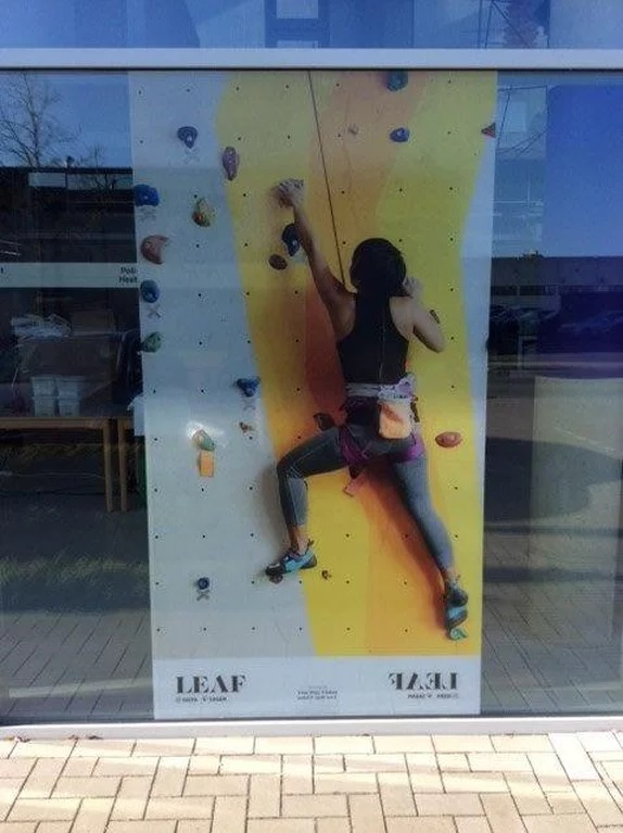 two way vision, window film, front, outside, custom